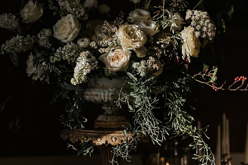 """Image by <a class=""""text-taupe-100"""" href=""""https://www.damienmilan.com"""" target=""""_blank"""">Damien Milan Photography</a> 