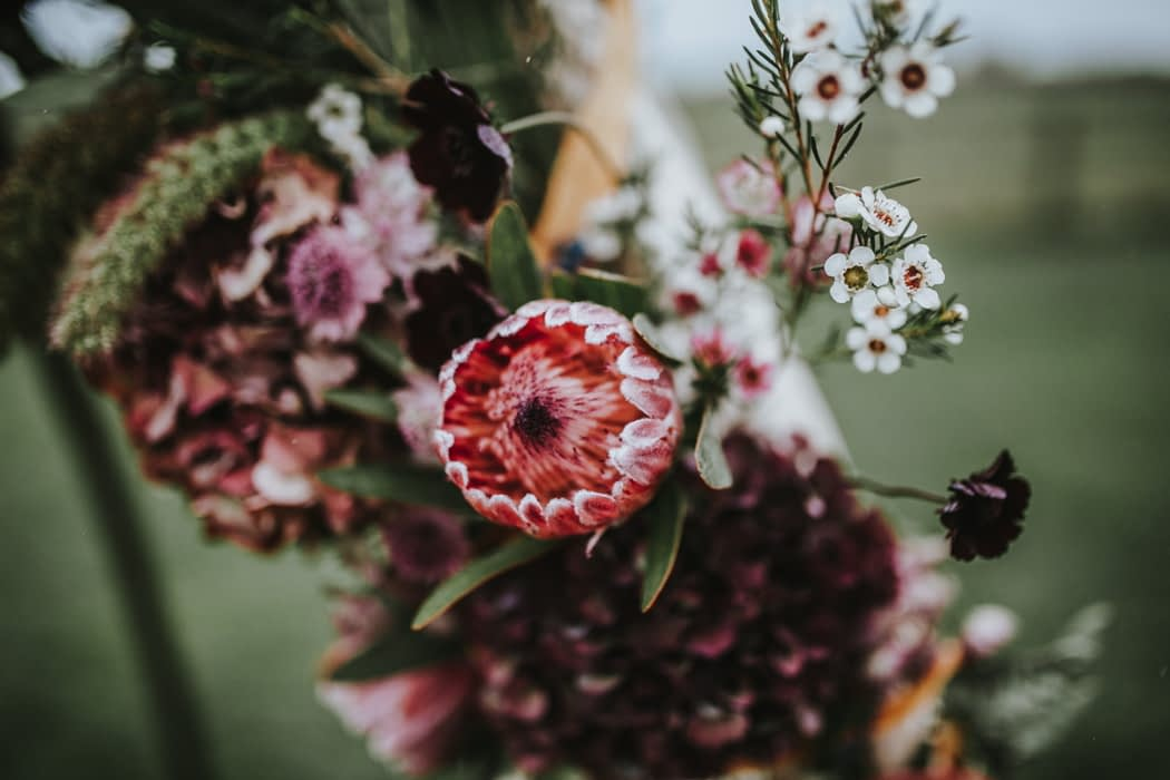 """Image by <a class=""""text-taupe-100"""" href=""""http://www.darinastodaphotography.co.uk"""" target=""""_blank"""">Darina Stoda Photography</a>."""