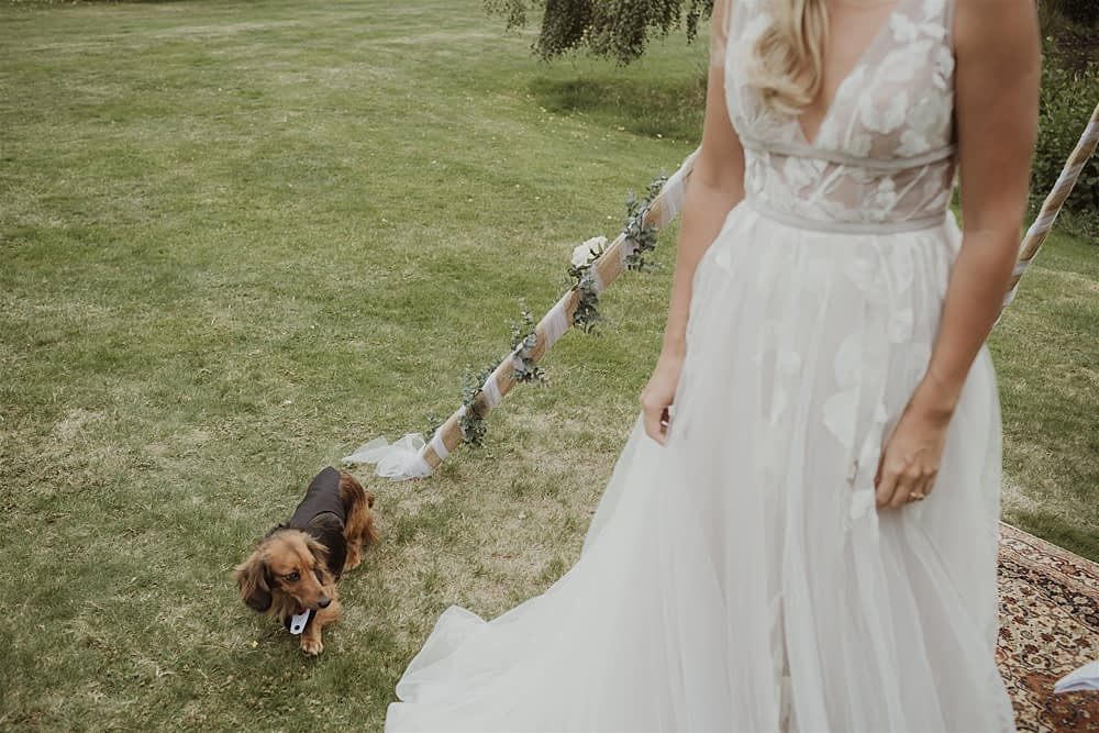 """Image by <a class=""""text-taupe-100"""" href=""""https://www.maureendupreez.com"""" target=""""_blank"""">Maureen Du Preez Photography</a>."""