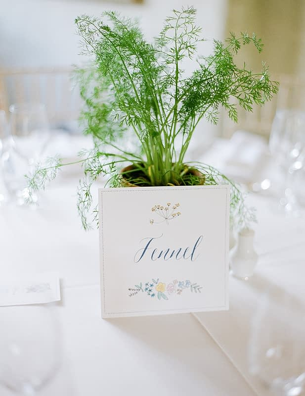 "Image by <a class=""text-taupe-100"" href=""http://juliemichaelsen.com"" target=""_blank"">Julie Michaelsen Photography</a> 