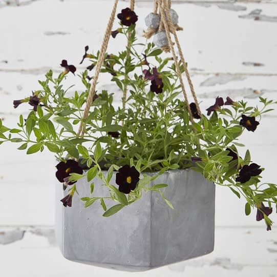 Nordic House Outdoor Concrete Hanging Planter - £39.95.