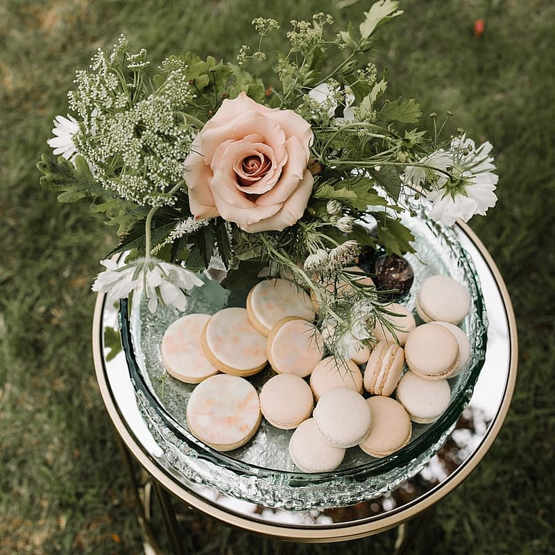"""Image by <a class=""""text-taupe-100"""" href=""""http://veronikaward.com"""" target=""""_blank"""">Veronika Ward Photography</a>."""