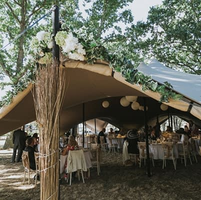 """The Oak Grove 
